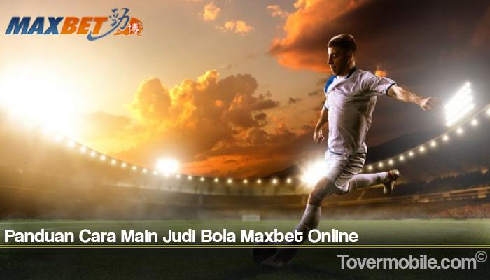Panduan Cara Main Judi Bola Maxbet Online